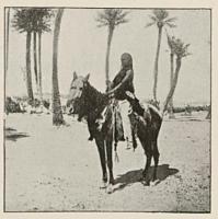 1904_ingall_jean