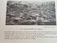 1935_lambert_3