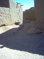 2006_ruepavee01