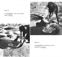 1972_bernus_4