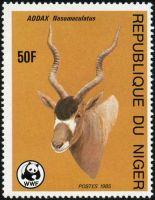 1985addax